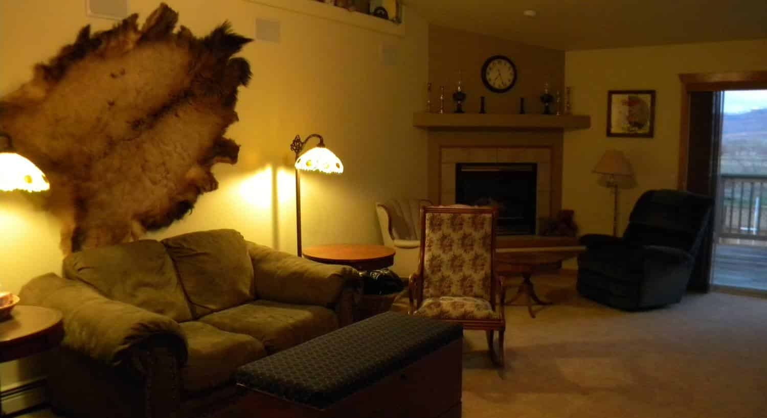 Living area with upholstered love seat, antique chair, fireplace, and animal fur hanging on the wall